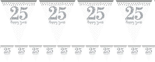 25th Silver Sparkling Wedding Anniversary Flag Bunting - 4m