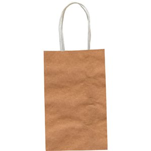 Natural Paper Party Bag - Small 22cm