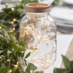 Beautiful Botanics Rose Gold String Lights - 3m