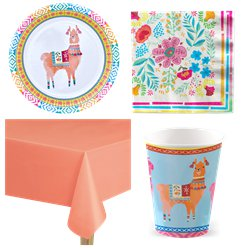 Mexican Boho Party Pack - Value Pack For 8