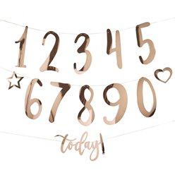 Rose Gold Create Your Own Birthday Bunting - 1.5m