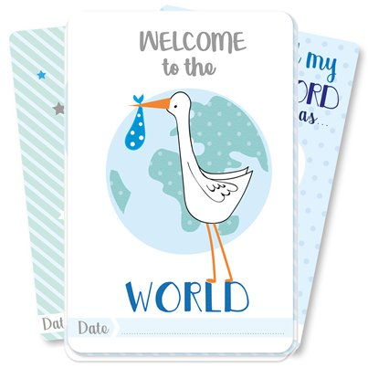 Baby Boy Moment Cards