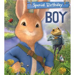 Peter Rabbit 'Birthday Boy' Activity Birthday Card - 182mm x 160mm