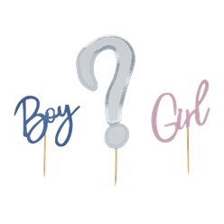 Gender Reveal Gender Reveal Cake Topper Set