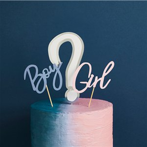 Gender Reveal Cake Topper Set