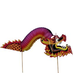 Hand Held Chinese Dragon
