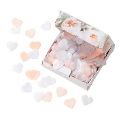 Pastel Tissue Heart Throwing Confetti