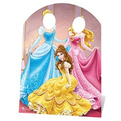Disney Princess Stand In Photo Prop - 1.27m