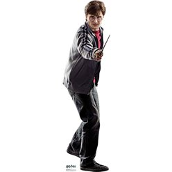 Harry Potter Mini Cardboard Cutout - 92cm