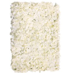 Cream Hydrangea Flower Wall