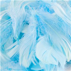 Baby Blue Decorative Feathers - 50g