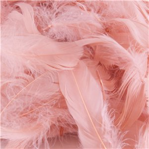 Rose Gold Decorative Feathers - 50g