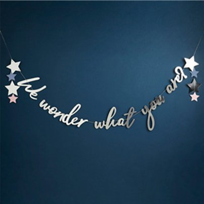 Gender Reveal We Wonder What You Are Letter Banner - 2m