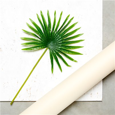 Green Palm Leaf Decoration - 50cm