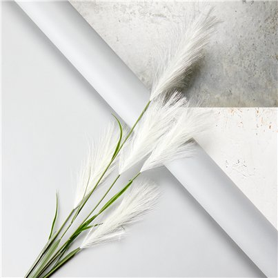 Cream Pampas Grass Decoration - 1.45m