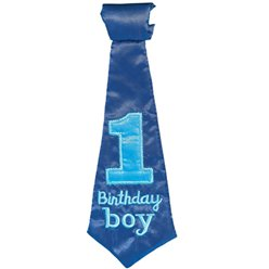 Boy's 1st Birthday Tie