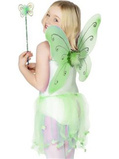 Childrens Green Glitter Fairy Wings & Wand - 41cm