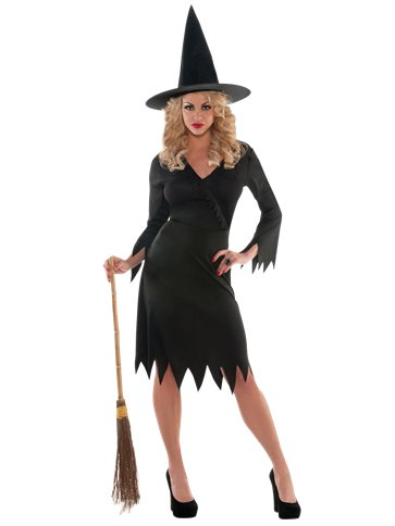 Wicked Witch - Adult Costume front