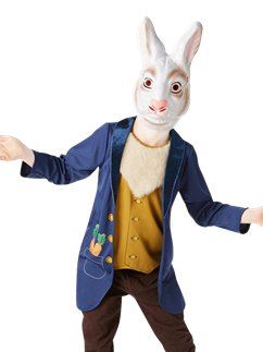 Mr Rabbit - Child Costume