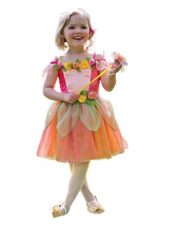 Peach Melba Fairy  sc 1 st  Party Delights & Fairy Costumes | Party Delights