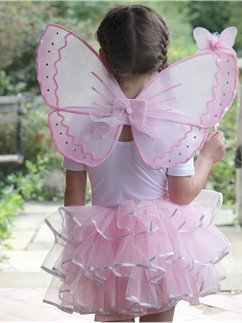 Candy Floss Fairy Set