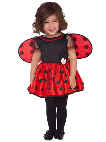 Little Ladybug - Toddler Costume front