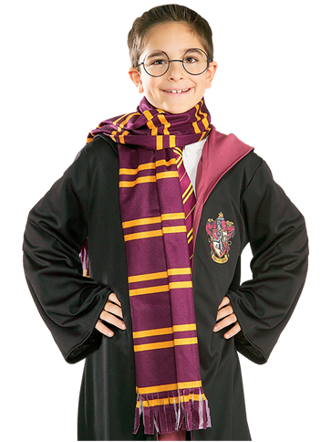 Harry Potter School Robe Deluxe Kit Child Costume