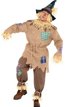 Mr. Scarecrow - Adult Costume