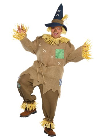Mr. Scarecrow Plus Size - Adult Costume front
