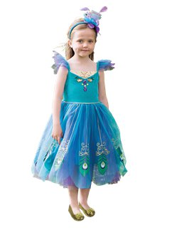 Peacock Fairy  sc 1 st  Party Delights & Fairy Costumes | Party Delights