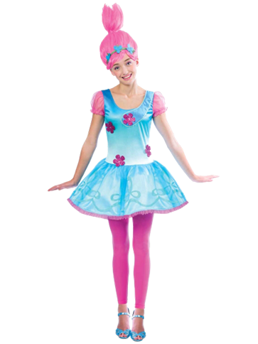 Poppy Troll - Child and Teen Costume  front