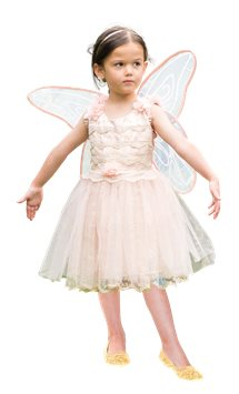 Vintage Fairy - Child Costume
