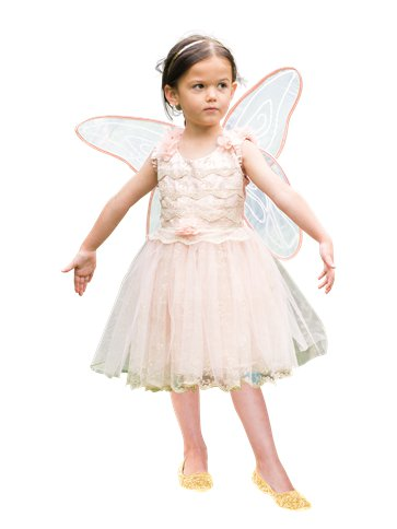 Vintage Fairy - Child Costume front