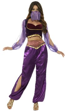 Arabian Princess Purple - Adult Costume