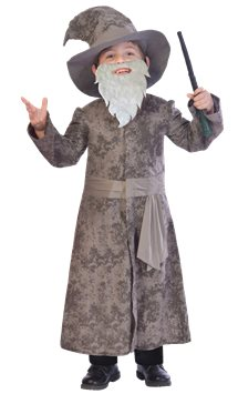 Wise Wizard - Child Costume