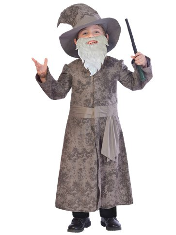 Wise Wizard - Child Costume front