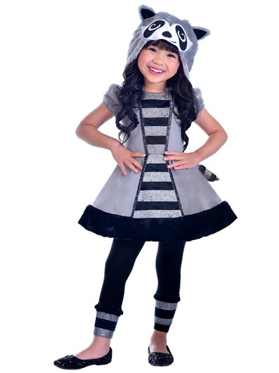 Raccoon - Child Costume
