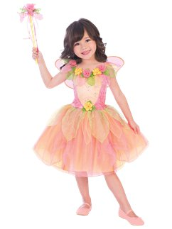 aa6696b1e050 Fairy Costumes | Party Delights