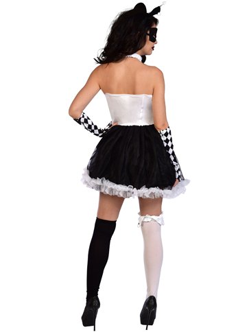 Sexy Jester Lady - Adult Costume back