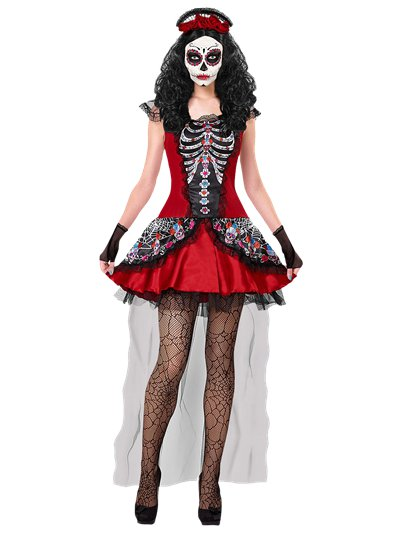 Day of the Dead Dress - Adult Costume