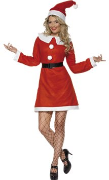 Miss Santa - Adult Costume
