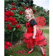 Ladybird - Toddler & Child Costume