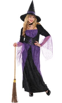 Pretty Potion Witch - Adult Costume
