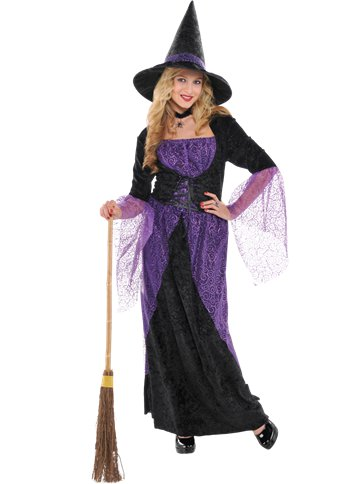 Pretty Potion Witch Adult Costume Party Delights