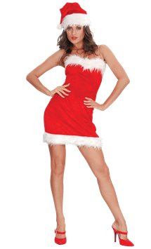 Miss Sexy Santa - Adult Costume