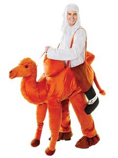 Step-In Camel