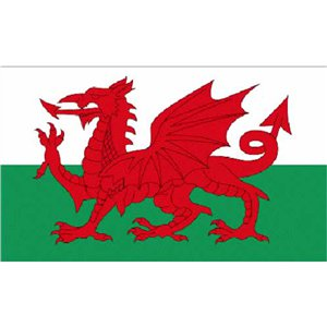 Welsh Cloth Flag - 5ft x 3ft