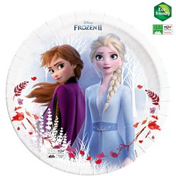 Frozen Compostable Paper Plates  - 23cm