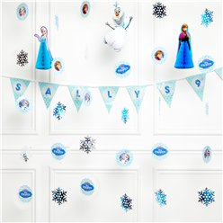 Disney Frozen Party Decorations Kit