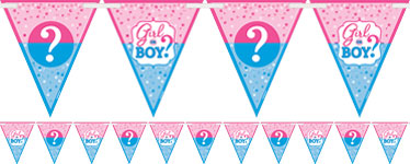Gender Reveal Flag Banner